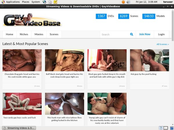 Gay Video Base Wiki