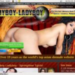 Cracked Ladyboy Ladyboy Account